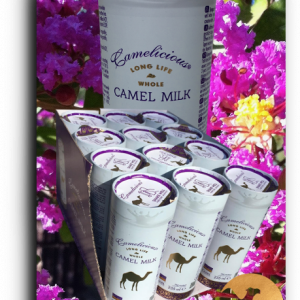 LIQUID UHT camel milk 235 ml 12 Cans