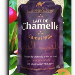 Powdered camel milk - 100g. 10 day cure